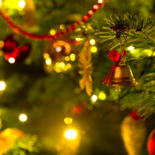Weihnachtsbaum für das Kanzleramt kommt aus dem Kreis Viersen